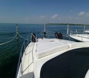sea ray yate